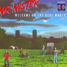 MrMister-WelcomeToTheRealWorld