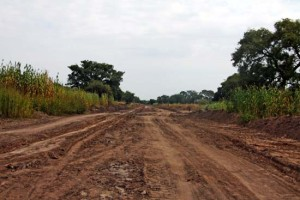 A road under construction in Rumbek East County. [©Gurtong]