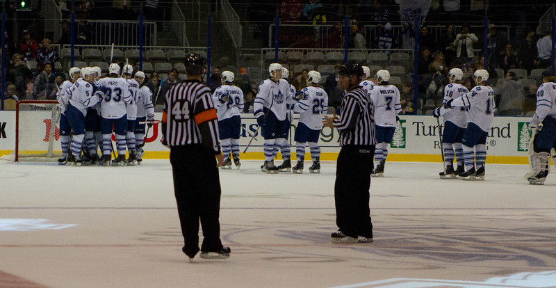 The Toronto Marlies celebrate its 3-2 win over the Rochester Americans (JP Dhanoa)