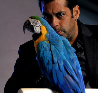 Salman Khan during promotions of Bigg Boss 6 - Pic 1 2