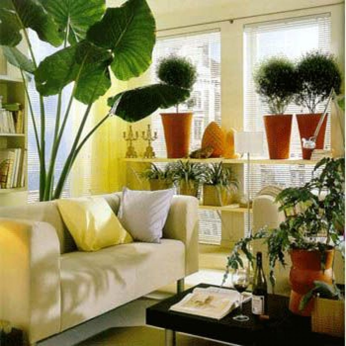 Plant Decor In Living Room
