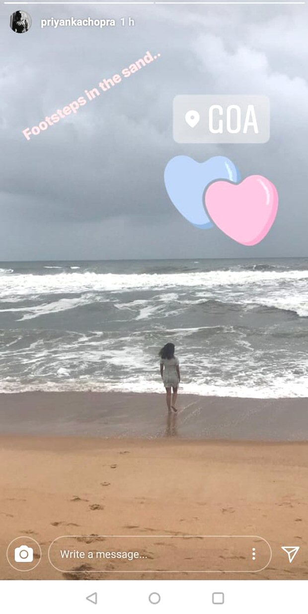 Priyanka Chopra shares INSIDE pics of her BEAU & BRO Nick Jonas and Siddharth Chopra from Goan vacay-