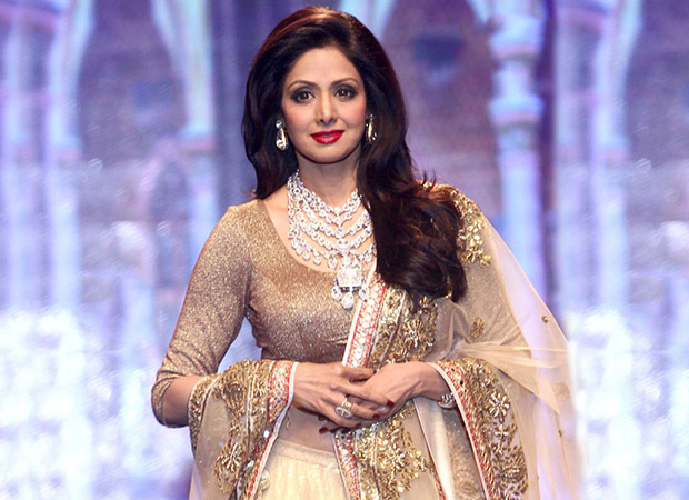 Sridevi The HEROINE who was a HERO