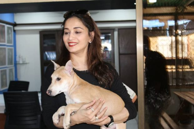 Madhuri Dixit adopts a dog from PETA on son Arin's birthday