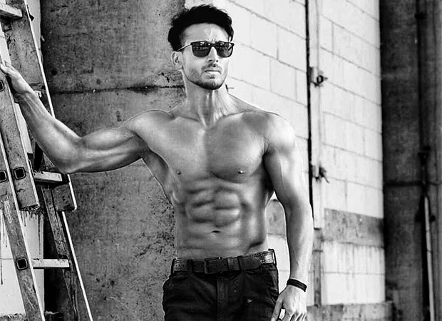 Tiger Shroff raises temperatures as he flaunts his shirtless body in this latest photo