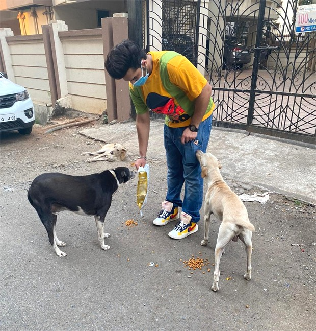 Paras Chhabra says he has been feeding the stray dogs around his building