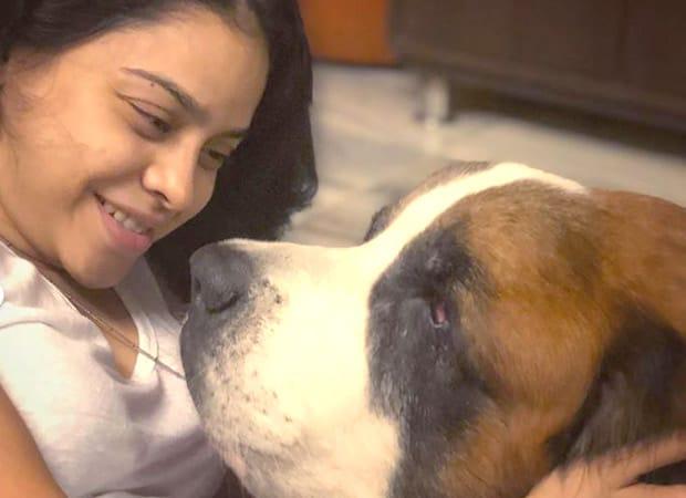 Sumona Chakravarti of The Kapil Sharma Show bids adieu to her pet dog Rooney after 12.5 years