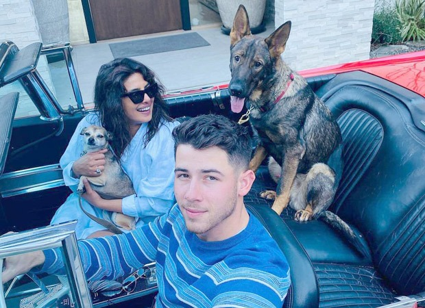 Priyanka Chopra reunites with husband Nick Jonas and her two pets after wrapping The Matrix 4 shoot in Berlin