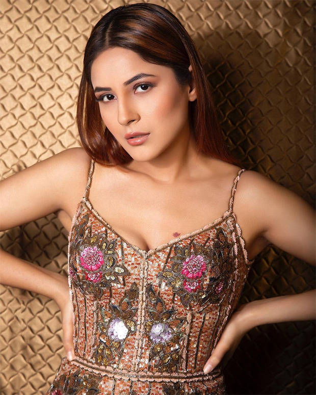Shehnaaz Gill looks glamourous in this plunging neckline embellished dress by Rocky Star