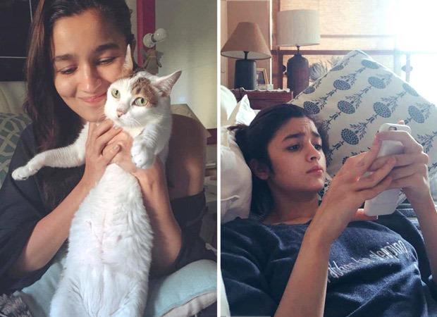 Alia Bhatt mourns the death of her pet cat Sheeba