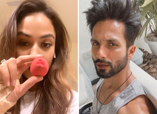 Mira Kapoor shares her millennial Mom Fail moment; Shahid Kapoor reacts
