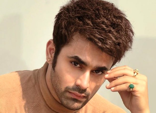 Pearl V Puri arrested in connection with the rape of a minor; Naagin co-star Anita Hassanandani stands in his support